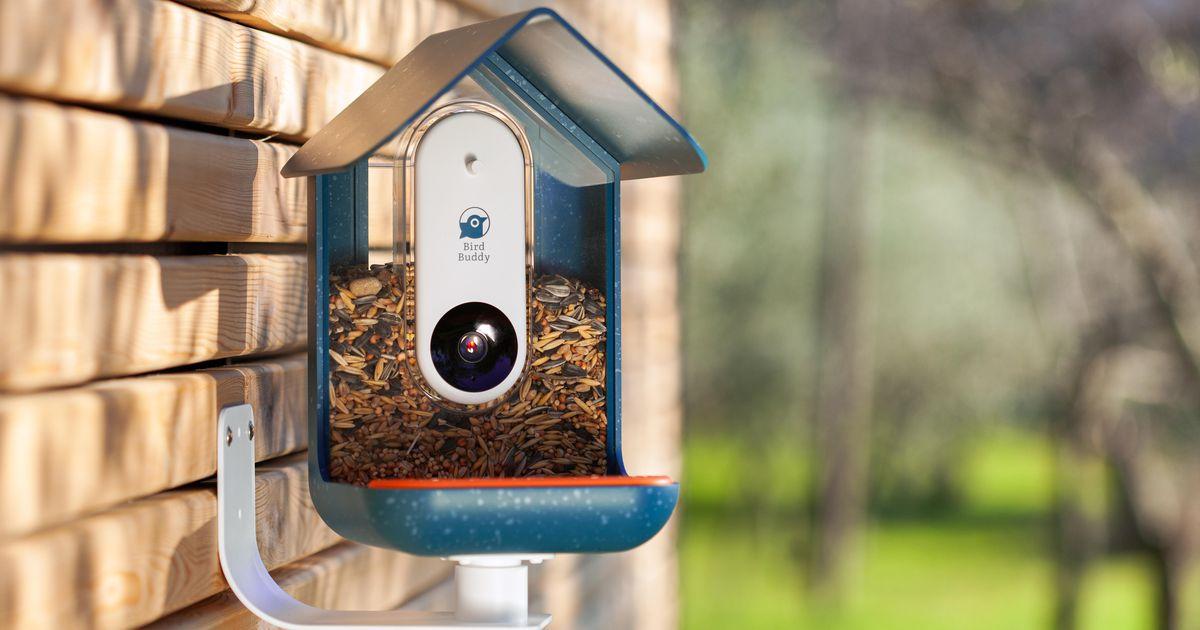 El comedero inteligente para pájaros convierte las selfies de pájaros en un juego coleccionable y una herramienta de conservación