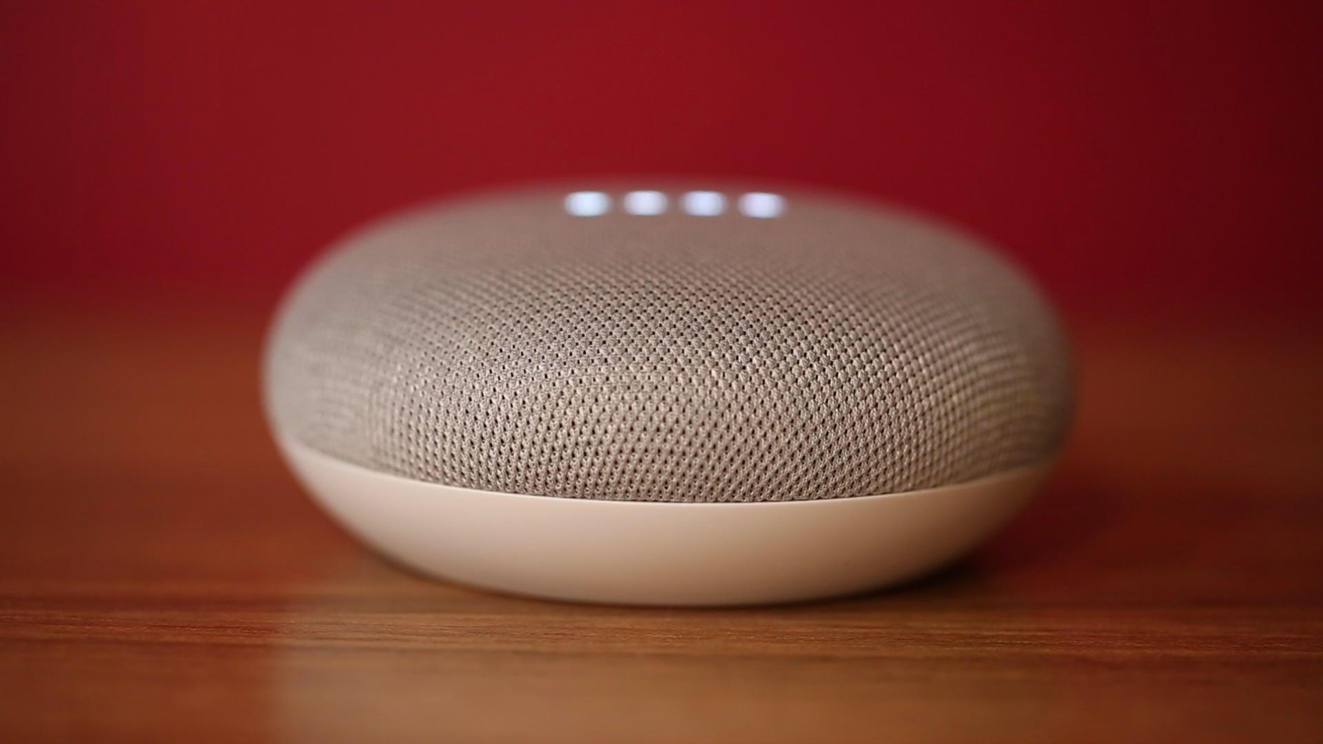fl-google-home-mini-10